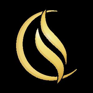 Chistine Lessard logo