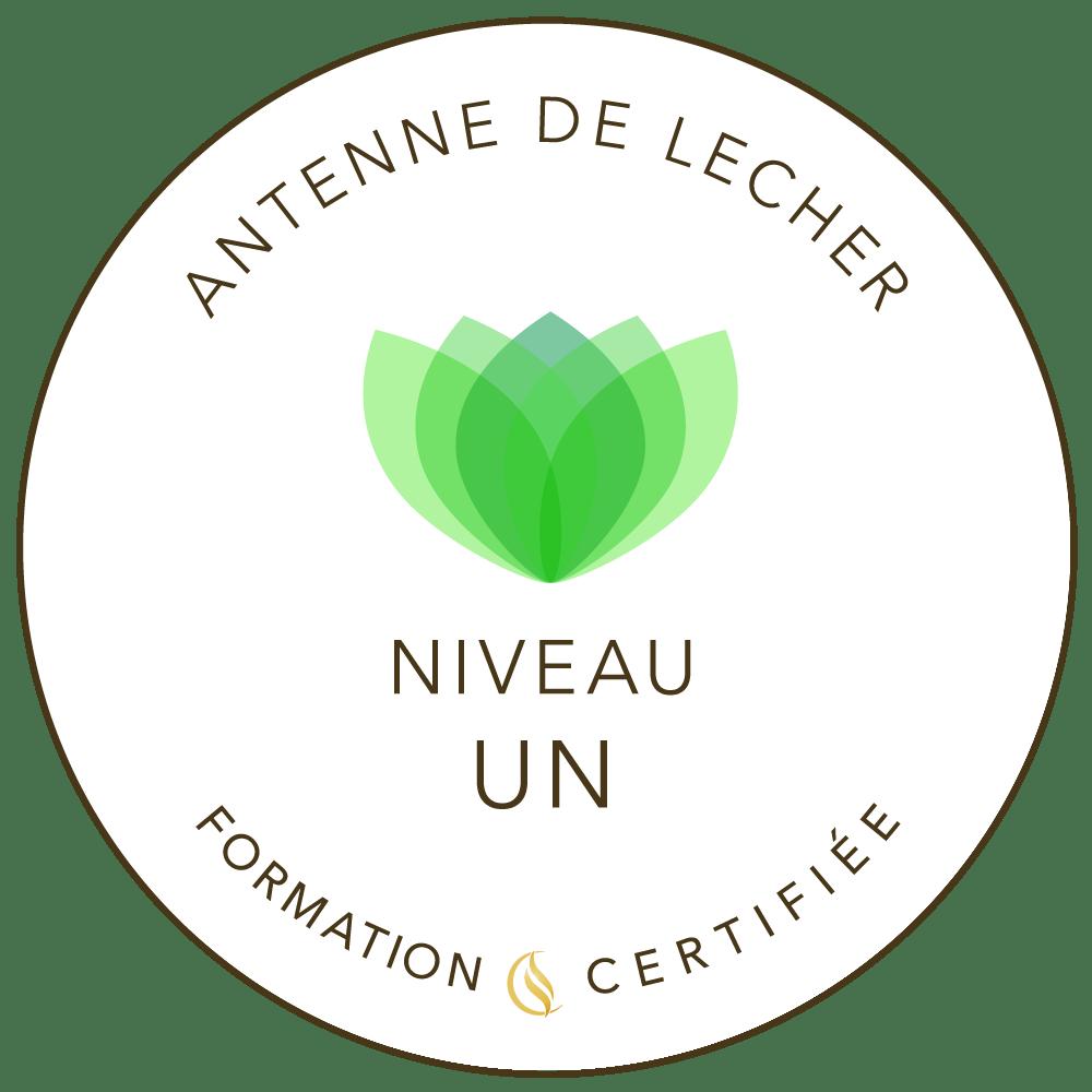 Antenne de Lécher Niveau 1 - formation certifiée