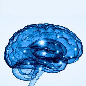Blog la puissance du cerveau