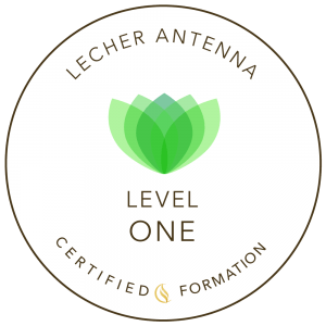 Lecher Antenna formation Level One