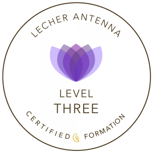 Lecher Antenna formation Level Three