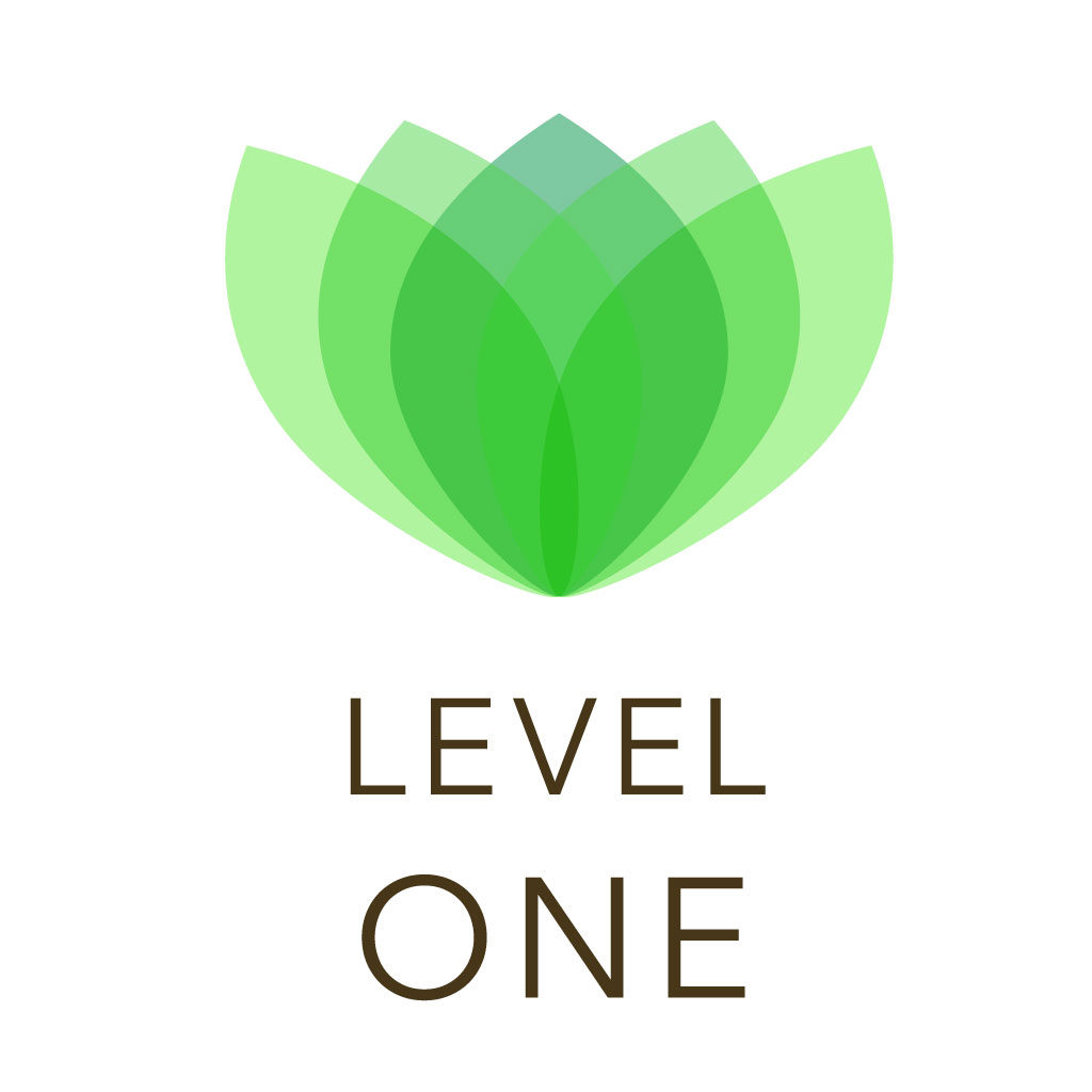 Lecher Antena formation Level One